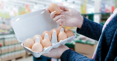 Consumo de ovos no Brasil deve ser o maior da história em 2018